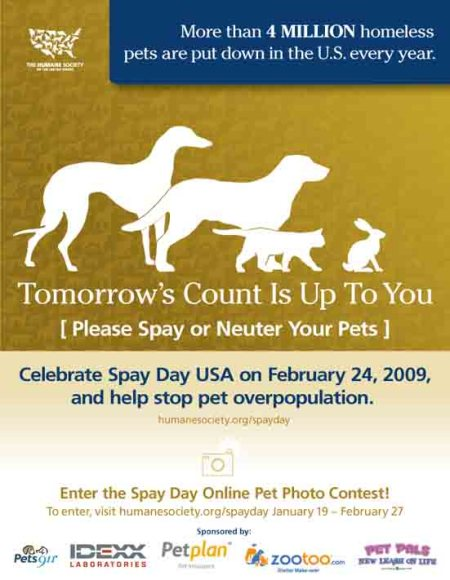 HSUS_Spay_Day_online_US_Poster_1_12