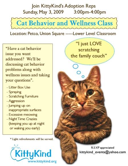 flyer_cat_class_fin1