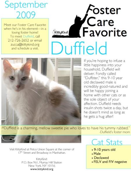 Microsoft Word - 8.31 KKFCF_Duffield_Sept.doc