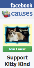 Join KittyKind's cause on Facebook