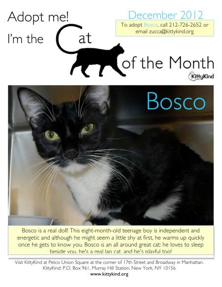 Dec COM Bosco