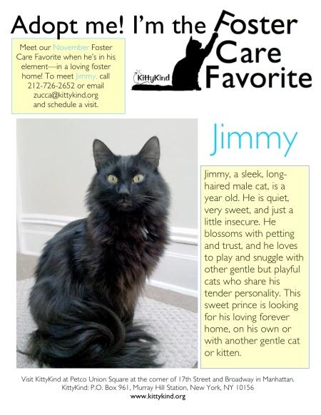 Nov FCF Jimmy
