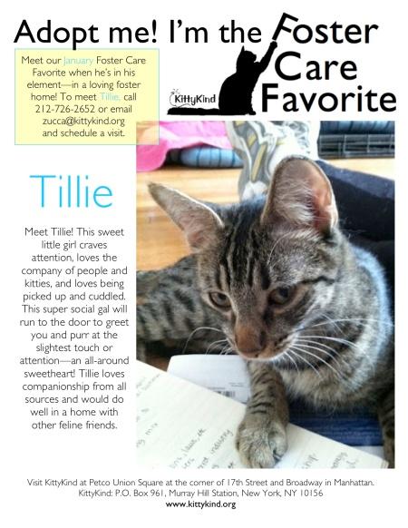 Tillie FCF 1_5_12