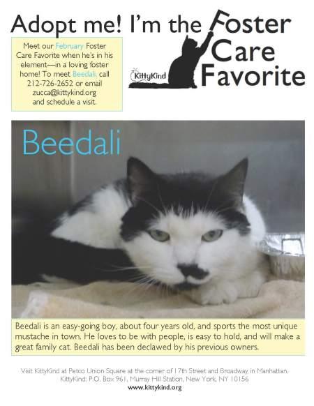 Beedali FCF 2_5_12