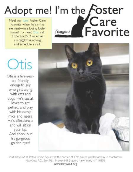 Otis FCF 6_16_13