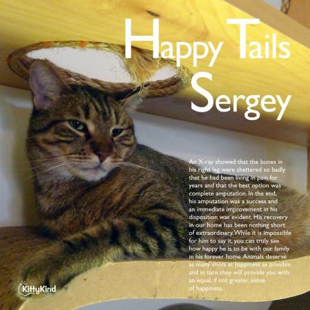Happy Tail Sergey